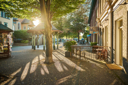 An area of cobblestone streets, a gazebo, some trees, and some local businesses