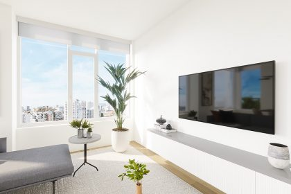 A living space featuring a TV, houseplant, small side table, and rug.